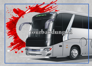 medium-bus-jetbus-30-seat