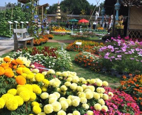 Taman Begonia Bandung