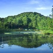 Bumi Perkemahan Ranca Upas Bandung