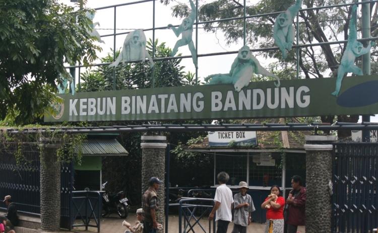 Kebun Binatang Bandung yang ramai dan legendaris