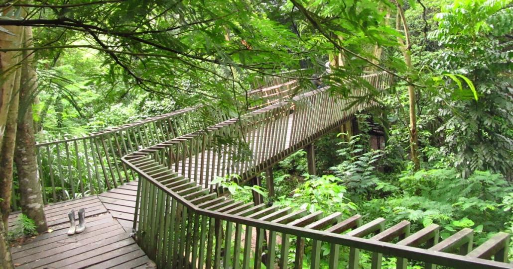 destinasi wisata baru bandung forest walk baksil